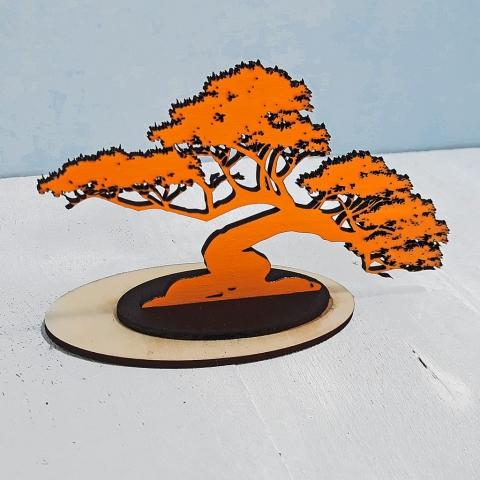 bonsai above